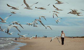 Image of Virginia Beach