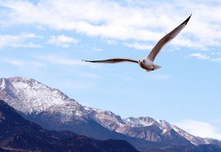 Image of Colorado Springs