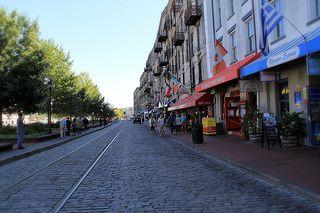 Image of Savannah